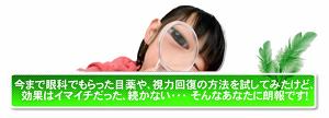 1日たったの13分でみるみるよくなる視力回復法の感想、口コミ、レビュー 田中謹也さん.png